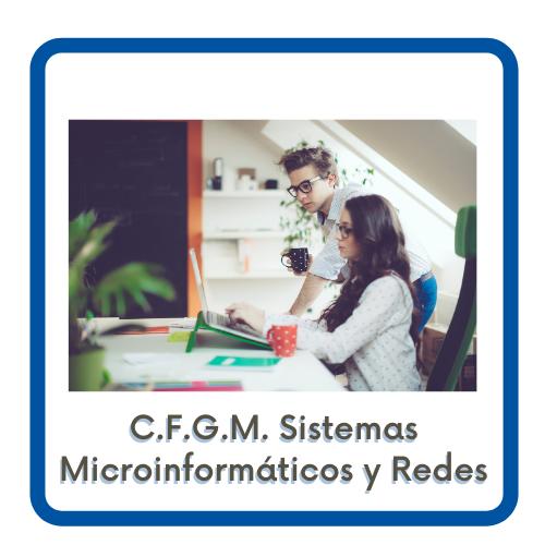 Acceso a la página del CFGM Sistemas Microinformáticos y Redes
